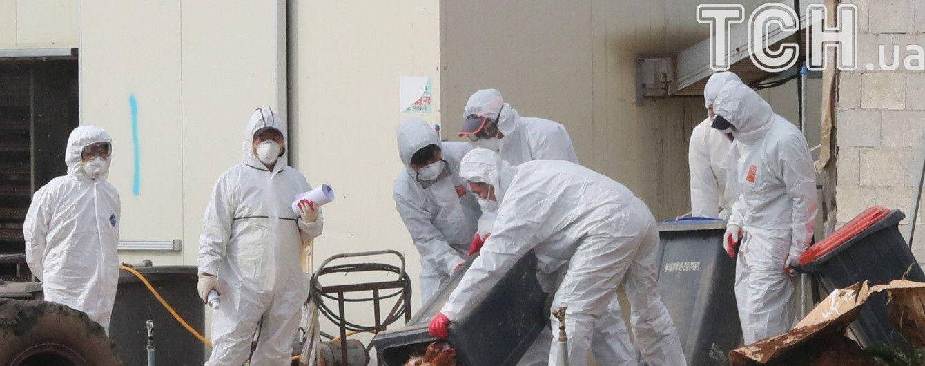 МИД советует украинцам воздержаться от поездок в Малайзию из-за птичего гриппа