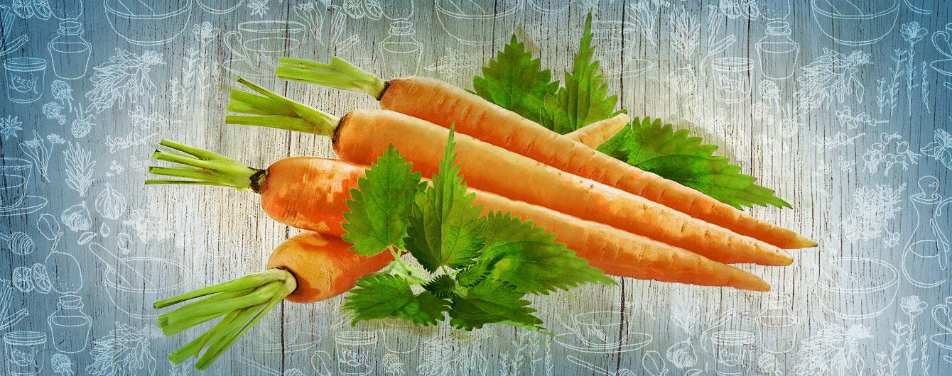 Про користь сирої моркви і кропиви