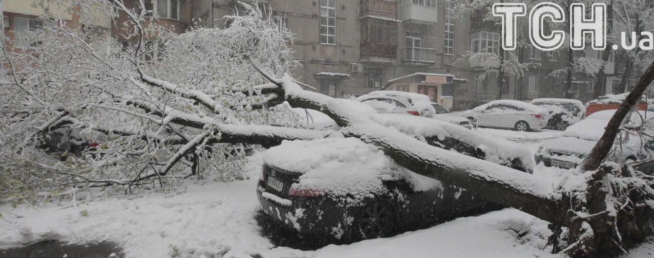 Снігова негода: в Україні знеструмленими залишаються понад 360 населених пукнтів