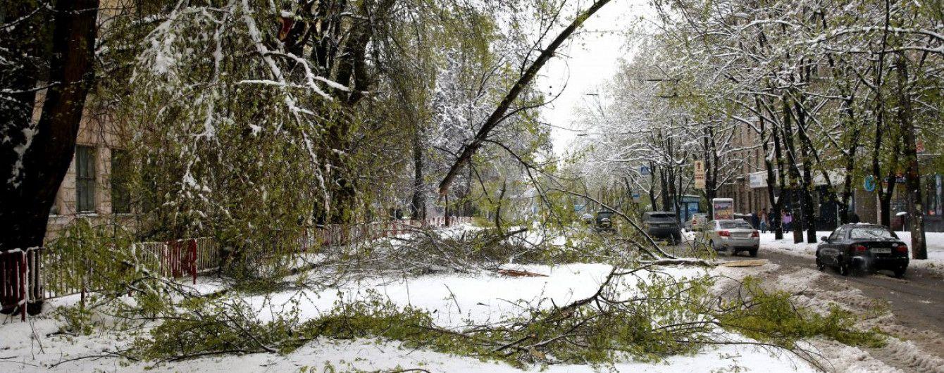 Квітневі снігопади: більше 300 населених пунктів досі залишаються без світла