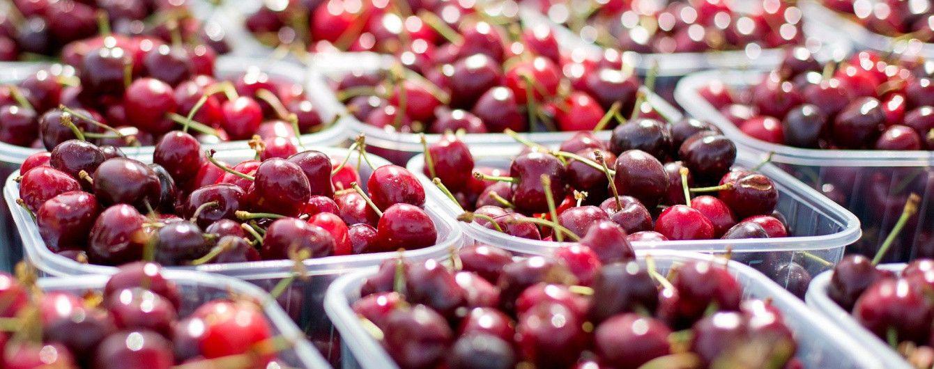 В Україні через холоднечу під серйозною загрозою опинився врожай плодових