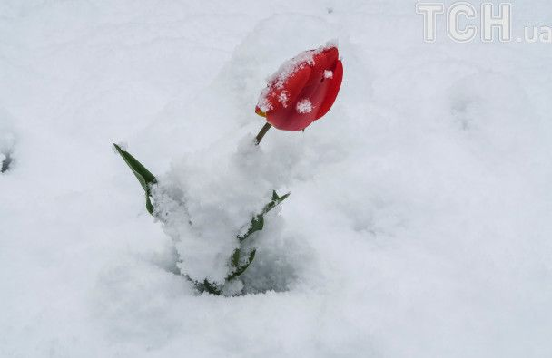 Європа замерзає під весняними снігопадами