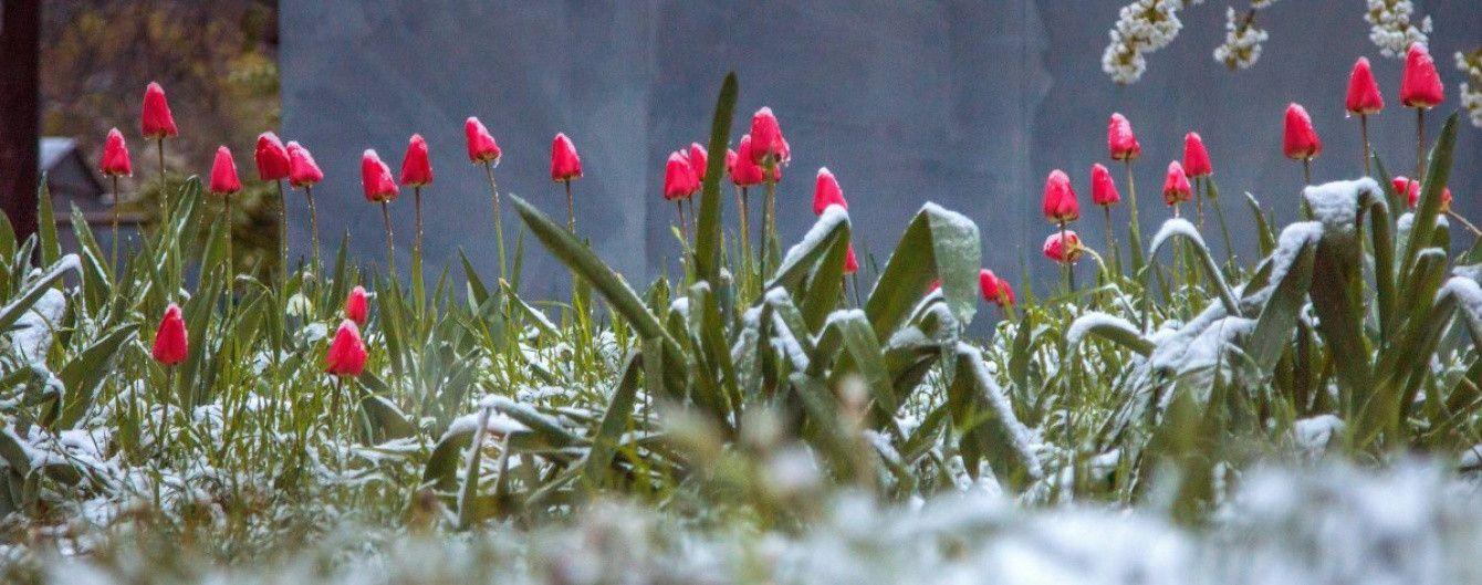 """Самая холодная ночь и еще пять дней непогоды: синоптики и врачи рассказали, как выдержать майскую """"зиму"""""""