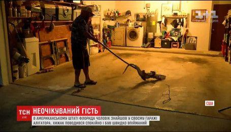 В американском штате Флорида мужчина нашел в гараже аллигатора