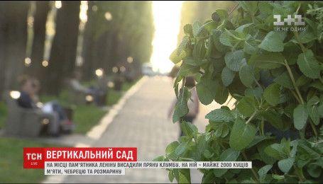 На місці, де раніше стояв пам'ятник Леніну, висадили їстівну клумбу