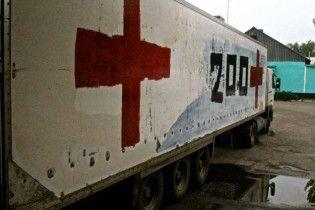 Тела почти тысячи погибших до сих пор не могут распознать и не вывезли из оккупированного Донбасса