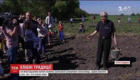 На Художественном хуторе Обирок начинающие земледельцы учились сеять хлеб