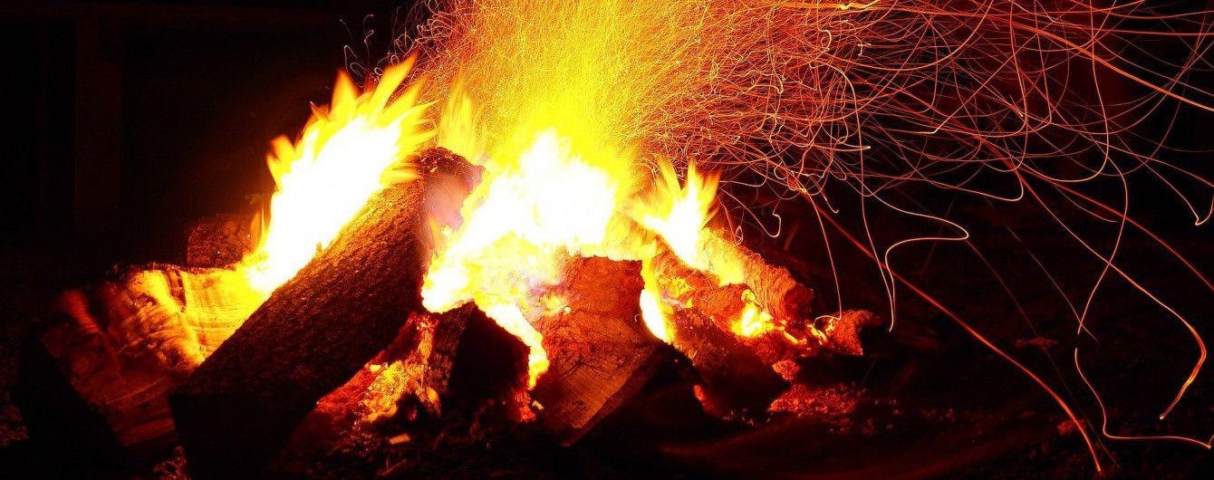 На Херсонщине горело 40 гектаров соснового леса