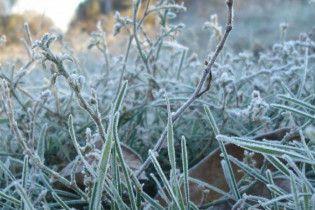 Синоптики попередили про сильні заморозки у двох областях