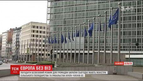 Очередные формальности для открытия безвиза с Украиной должны согласовать в Брюсселе