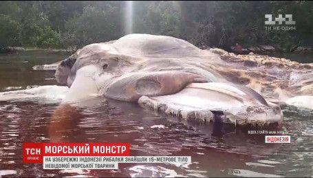 Тіло невідомого 15-метрового чудовиська винесло на узбережжя Індонезії