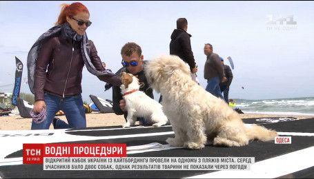 На одном из пляжей Одессы провели открытый кубок Украины по кайтбордингу