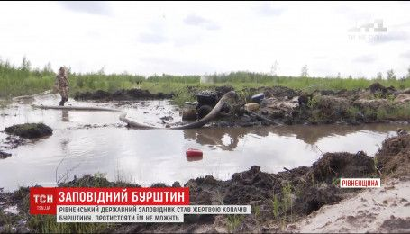 Копатели янтаря за два месяца уничтожили почти три гектара угодий заповедника в Ровенской области