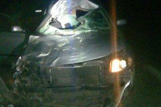 На Львовщине женщина на Volkswagen сбила лошадь, пострадали двое людей