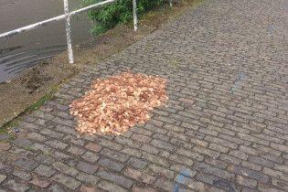 У Лондоні фотограф просто неба залишила 15 тисяч монет і спостерігала за реакцією людей