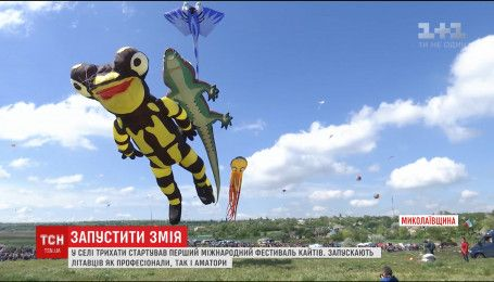 Сотні повітряних зміїв злетіли в небо на Миколаївщині