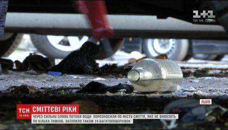 Потужна злива рознесла вулицями Львова відходи, які тижнями не вивозять з міста