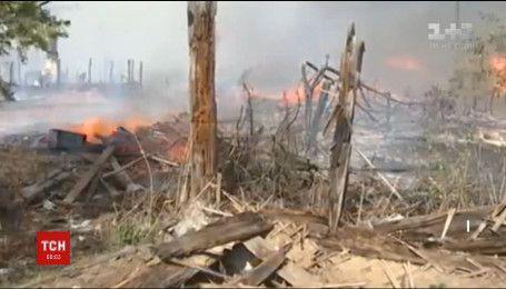 У Росії лісові пожежі охопили Сибір