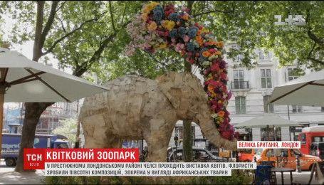 Престижный район Лондона флористы украсили цветочными слонами, носорогами и львами