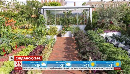 Выставка садов в Лондоне собрала поклонников ландшафтного дизайна со всей Европы