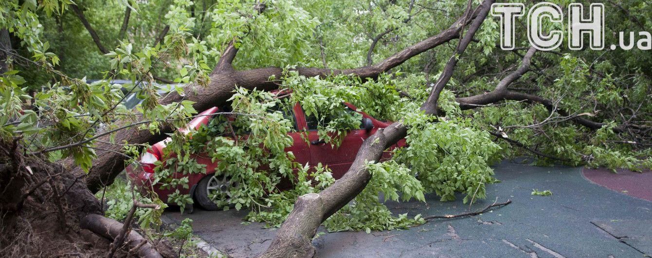 Атака стихии: в Москве восемь человек пострадали от сильного ветра