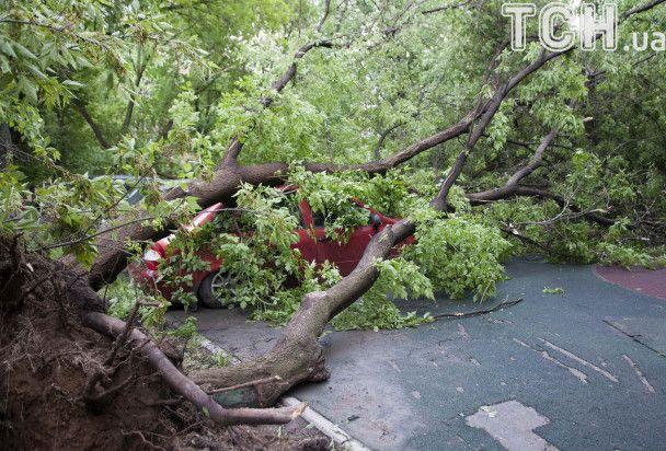 Убивчий буревій: ураган у Москві змітав дерева і заблокував виїзд із резиденції Медведєва
