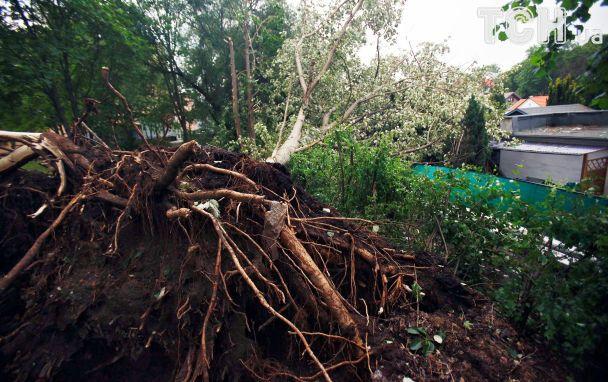 УСША вирує тропічний шторм Сінді, загинула дитина