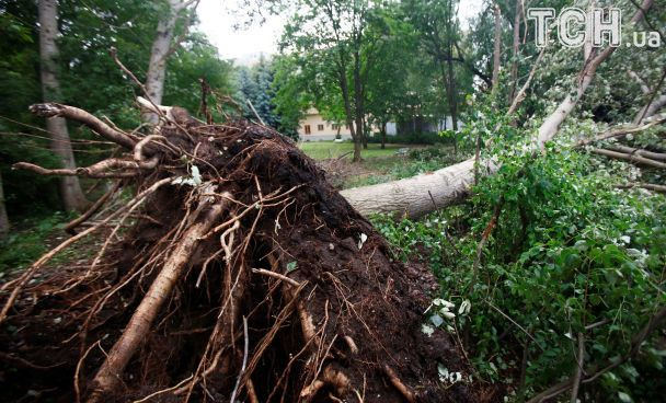 США атакував тропічний шторм, є загиблі