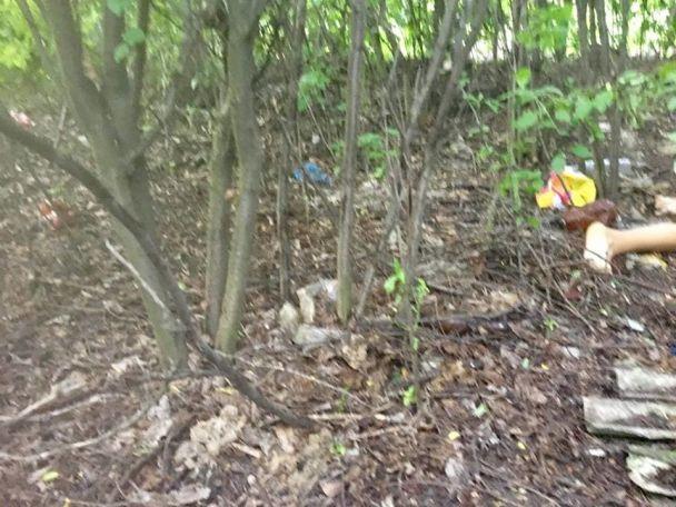 УВолновасі зниклу 14-річну дівчинку знайшли мертвою