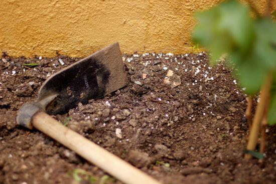 Змушував жертву копати собі могилу: з'явилися моторошні подробиці масового вбивства в РФ