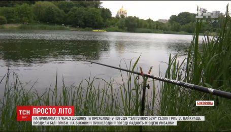 У перші дні літа в Україні дощило та пекло сонце