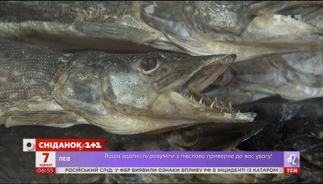 Лікарі просять відмовитися від вживання в'яленої риби через масові отруєння