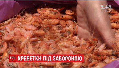 Управление экологии Николаевщины не выдает разрешения на вылов креветки на Кинбурнской косе