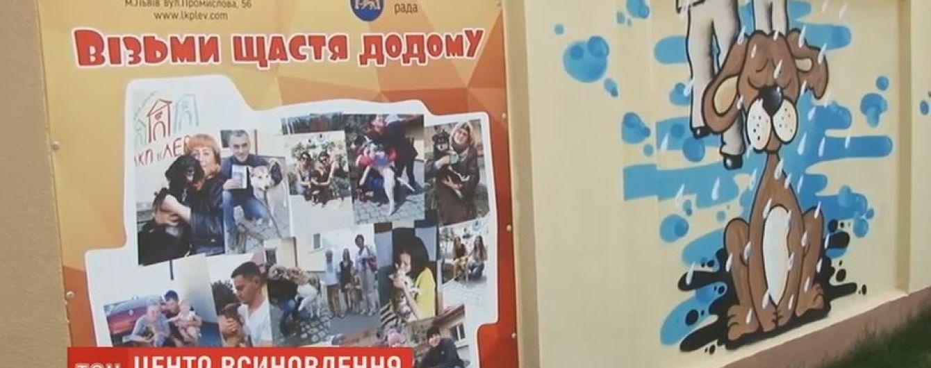 Центр усыновления бездомных животных открыли во Львове