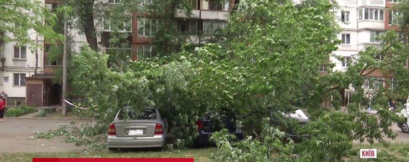 В Киеве дерево упало на парковку и раздавило три машины