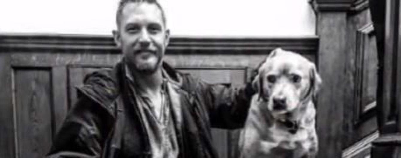 Том Харди в трогательном письме рассказал о смерти любимой собаки