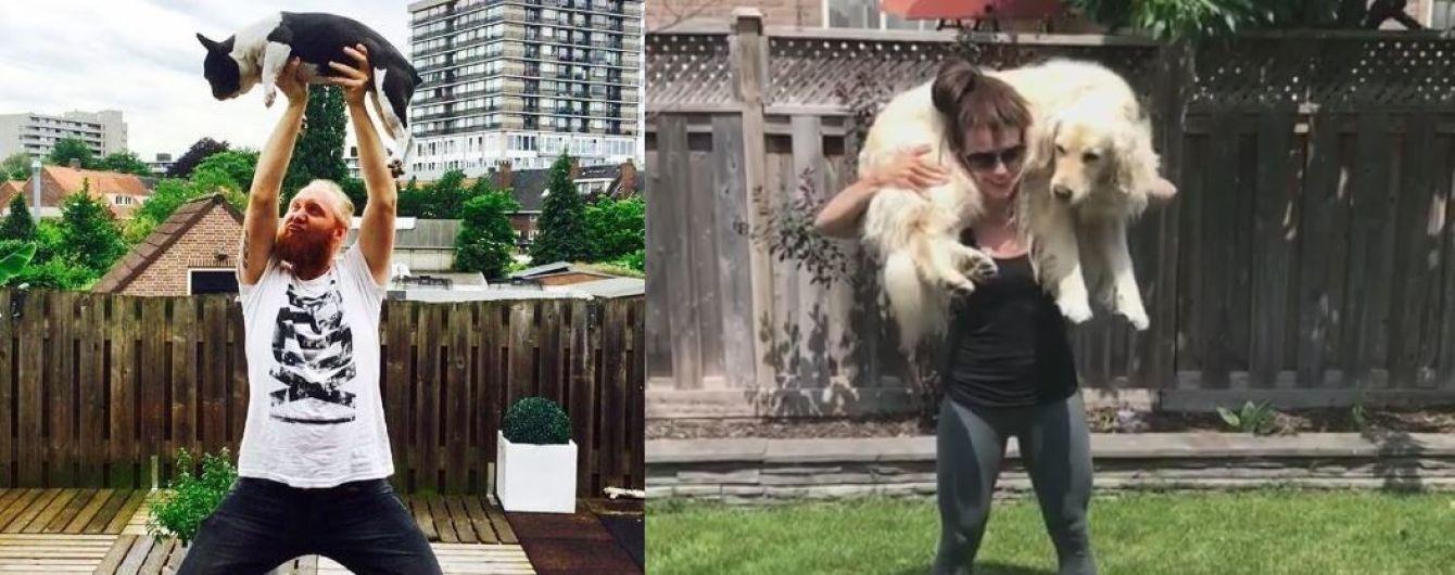 Видео задержания симпатика Путина и флешмоб приседания с собаками. Тренды Сети