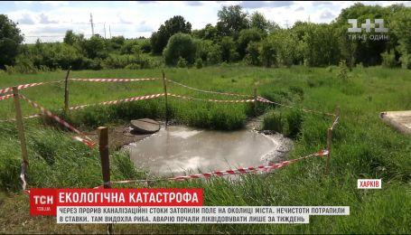 Из-за прорыва канализации в Харькове нечистоты загрязнили поля и пруды