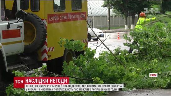 На Сумщині від потужного буревію загинула жінка