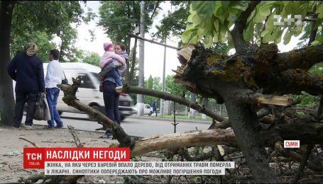 У лікарні померла жінка, на яку впало дерево під час буревію на Сумщині
