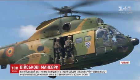 В Румынии солдаты из семи стран-членов НАТО начали военные учения