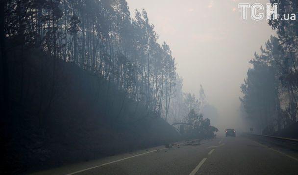 МЧС Российской Федерации предлагает Португалии помощь вборьбе сприродными пожарами