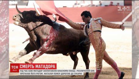 Во Франции матадор умер прямо во время корриды