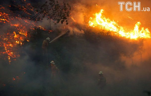 Португалия борется с пожаром, который убил в смертельной ловушке десятки людей