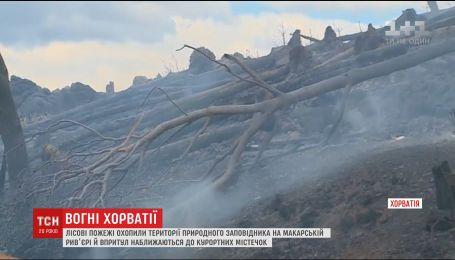 Сотни спасателей пытаются потушить лесные пожары в Хорватии