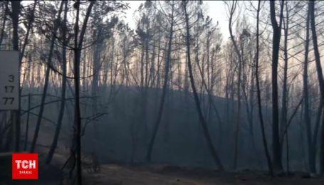 Рятувальники загасили 70 відсотків пожеж в Португалії