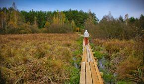 Міжрічинський парк. Унікальна природа півночі України