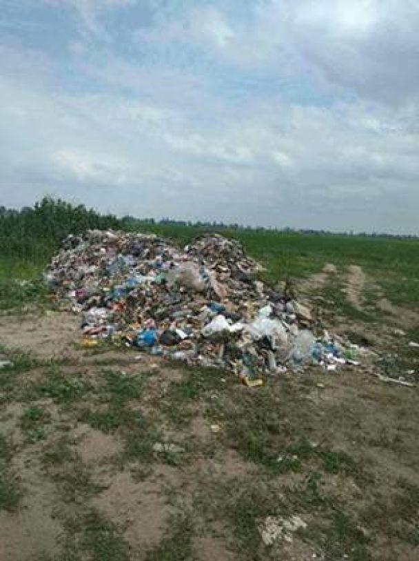 Невідомі скинули у полі біля Борисполя понад 60 тонн львівського сміття