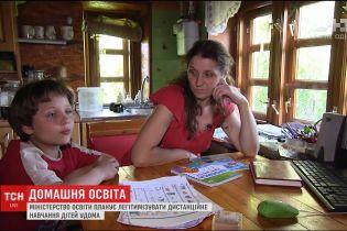 Міністерство освіти планує легітимізувати дистанційне навчання вдома
