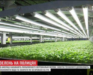 В Сполучених Штатах набувають популярності вертикальні ферми